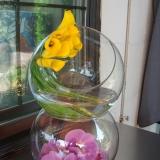 Arrangement de fleurs pour le bar