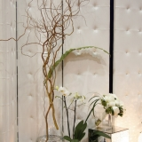 Exemple de Location pour Murs Architecturaux, Vase spectaculaires, Plantes